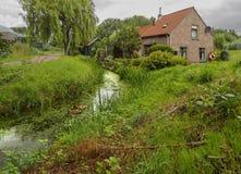 Casa bonita pelo rio ou canal nas madeiras e nos juncos nublados na cidade holandesa de Vlaardingen fotos de stock