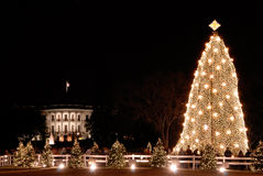 Casa branca e a árvore de Natal nacional Imagens de Stock Royalty Free