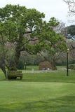 Casa branca Lawn4 Imagem de Stock Royalty Free
