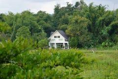 Casa branca na floresta Imagens de Stock