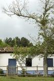 Casa brasileña vieja de la granja con la puerta y árbol y cerca de madera azules de la ventana Foto de archivo