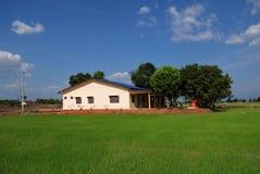 Casa, campo del campo de arroz Imagen de archivo libre de regalías