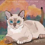 Casa Cat Illustration libre illustration