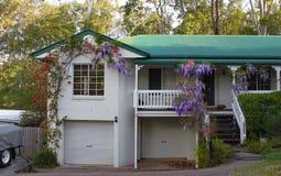 Casa cerca de Brisbane Australia con la glicinia que crece sobre las escaleras y el pórtico y los árboles de goma altos detrás Imagen de archivo libre de regalías