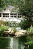Casa cerca del agua rodeada por los árboles Imagenes de archivo