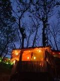 casa clara da árvore foto de stock