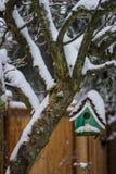 Casa coberto de neve verde do pássaro fotos de stock royalty free