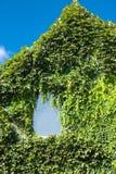 Casa coberto de vegetação Fotografia de Stock