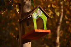 Casa colorata di legno per gli uccelli fotografia stock libera da diritti