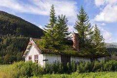 Casa com os abeto no telhado Foto de Stock Royalty Free