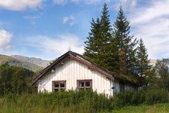 Casa com os abeto no telhado Imagem de Stock