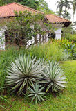 Casa com projeto ajardinando natural Foto de Stock Royalty Free