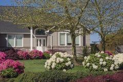 Casa com rododendros cor-de-rosa e brancos Fotos de Stock Royalty Free