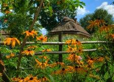 A casa com um telhado da palha Imagem de Stock