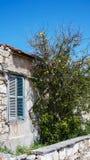 Casa com verde Chipre de Bush da pedra da janela imagem de stock royalty free