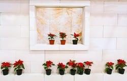 Casa con las flores Foto de archivo libre de regalías