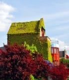 Casa con las plantas Foto de archivo