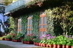 Casa cubierta con las plantas y las flores Fotografía de archivo libre de regalías