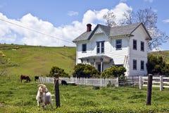 Casa da cabra Imagens de Stock Royalty Free