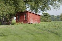Casa da chocadeira Foto de Stock Royalty Free