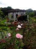 Casa da erva mate caminhos de Royalty Free Stock Images