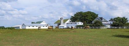 Casa da exploração agrícola com campo e silo fotos de stock royalty free