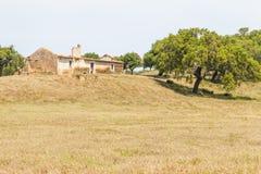 A casa da exploração agrícola e a árvore de cortiça abandonadas no Santiago fazem Cacem foto de stock royalty free
