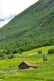 Casa da grama do lado do país de Noruega Fotos de Stock Royalty Free