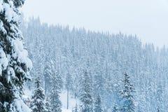 Casa da neve do inverno recurso Comeu na neve imagens de stock royalty free
