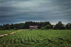 Casa da quinta abandonada no campo imagens de stock royalty free