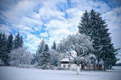 Casa da quinta austríaca no inverno fotografia de stock