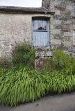 Casa da quinta córnico velha, Cornualha, Inglaterra fotos de stock