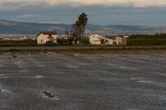 A casa da quinta com arroz coloca no delta de Ebro fotos de stock