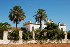 Casa da quinta com palmtrees Imagens de Stock Royalty Free