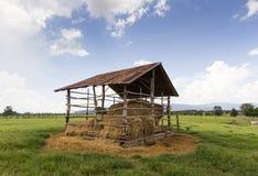 Casa da quinta da palha no prado Fotografia de Stock