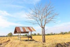 Casa da quinta em áreas rurais fotografia de stock royalty free