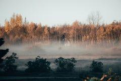Casa da quinta em uma floresta do outono imagens de stock royalty free