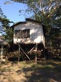 Casa da selva Imagem de Stock Royalty Free
