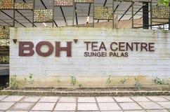 Casa da tè della piantagione di BOH in Cameron Highlands Immagini Stock Libere da Diritti