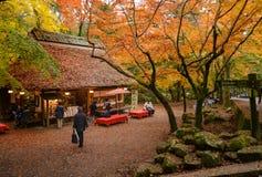 Casa da tè a Nara Park, Giappone fotografie stock