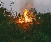 A casa da vila queima-se cedo em uma manhã chuvosa do verão Imagens de Stock