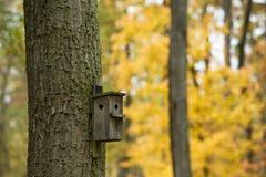 Casa de árbol Imágenes de archivo libres de regalías
