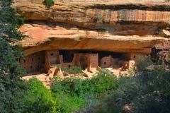 Casa de árbol, parque de estado del Mesa Verde Foto de archivo