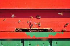 Casa de abeja Imagen de archivo