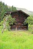 Casa de abeja en las montañas en Austria en el verano Imagen de archivo