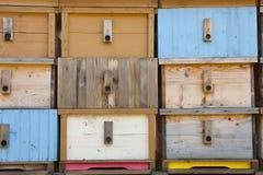 Casa de abeja a estrenar Fotos de archivo
