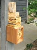Casa de abeja para las abejas de masón de la huerta Fotos de archivo libres de regalías