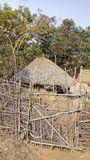 Casa de Adivasi na selva foto de stock