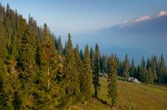 Casa de Anchoretic em montanhas Carpathian Imagem de Stock Royalty Free