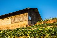 A casa de campo Fotografia de Stock